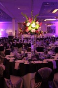 Wedding Event Lighting